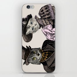 The Owl and the Pussycat iPhone Skin