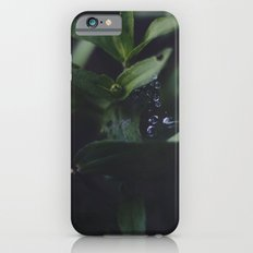 Summer Dew V.01 Slim Case iPhone 6s