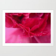 April showers in pink Art Print