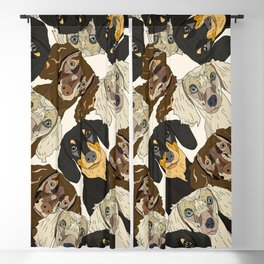 Doxie Nation Blackout Curtain