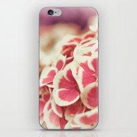 hydrangea iPhone & iPod Skins featuring Hydrangea by Julia Tomova