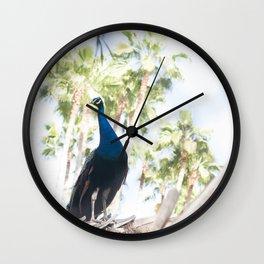 Fine Art Peacock Wildlife Animal Southern California Colored Print Wall Clock
