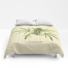 Vintage botanical print - Cannabis Comforters