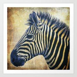 Zebra Portrait Pop Art Art Print