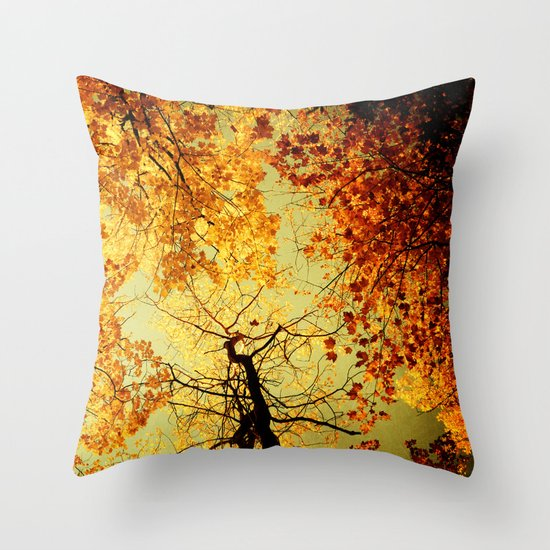 We Are Starlight, We Are Golden Throw Pillow