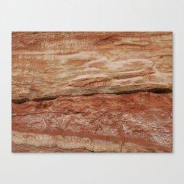 Jurassic Coast Canvas Print