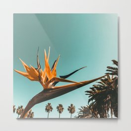 Birds of Paradise Print {1 of 3} | Palm Trees Ocean Summer Beach Teal Photography Art Metal Print