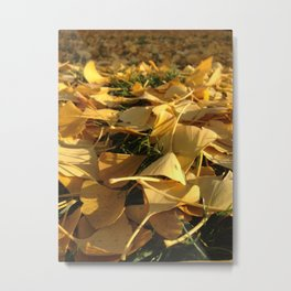 Yellow fall Metal Print