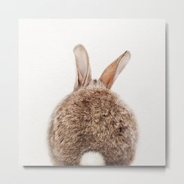 Bunny Tail, Bunny Rabbit, Baby Animals Art Print By Synplus Metal Print