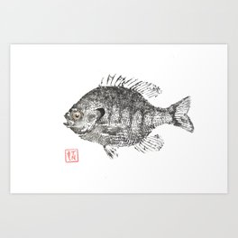 Bluegill 2 Art Print