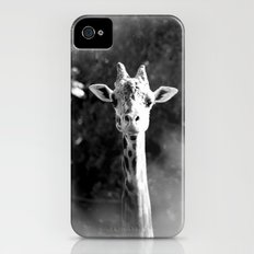 portrait of giraffe Slim Case iPhone (4, 4s)