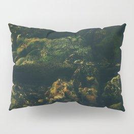 Day 0922 /// Quick megascans Pillow Sham
