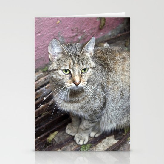 TIGERCAT of BERLIN Stationery Cards