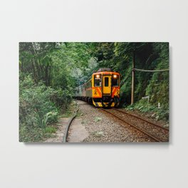 Jungle Train Metal Print