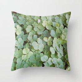 Redwood Sorel Throw Pillow