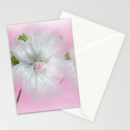 Malva Moschata 'Alba' Stationery Cards