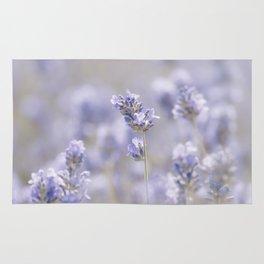 Lavenderfield - Lavender Summer Flower Flowers Floral Rug