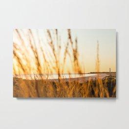 Modest Landscape Metal Print