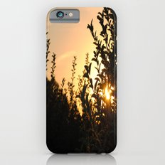 Apple Orchard at Sunset Slim Case iPhone 6s