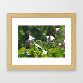 Flowers #34 (*Koinonia*) Framed Art Print