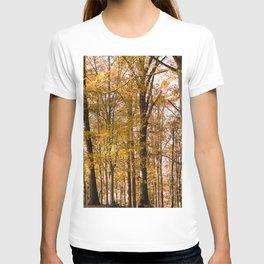 North Georgia Fall Colors 2 T-shirt