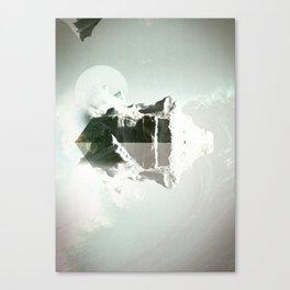 Polar Canvas Print