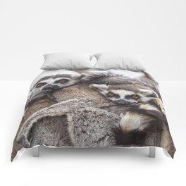 Lemur catta animals Comforters