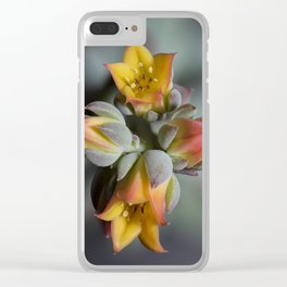 Succulent Blossom Clear iPhone Case