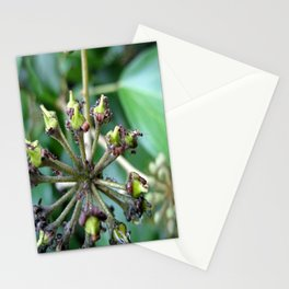 Ants on Plants Stationery Cards