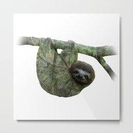 Slothin' Around Metal Print
