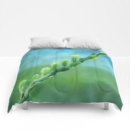 willow catkin Comforters
