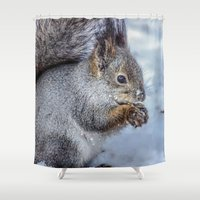 squirrel Shower Curtains featuring Squirrel by Svetlana Korneliuk