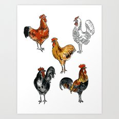 Chicken Breeds Art Print