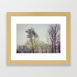 Trees and sunrise Framed Art Print