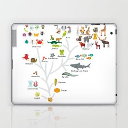 Evolution in biology, scheme evolution of animals on white. children's education back to scool Laptop & iPad Skin