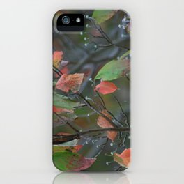 Fall in PA iPhone Case