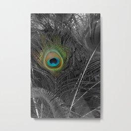 Peacock Peek Metal Print