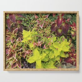 Foliage Fiesta With A Touch Of Begonia Serving Tray