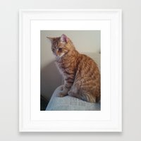 sofa Framed Art Prints featuring sofa kitty by NIKED4you