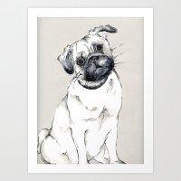 puzzled pug Art Print
