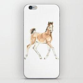 Prancing Foal iPhone Skin