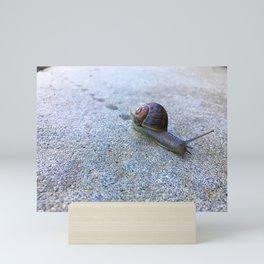 Snail Trail Mini Art Print