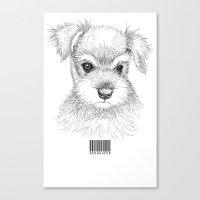 schnauzer Canvas Prints featuring Schnauzer by Det Tidkun