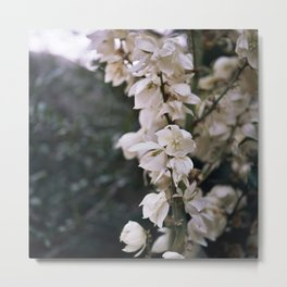 Blossoms in the Wind Metal Print