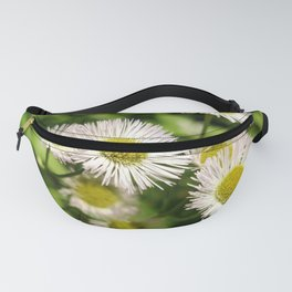 Weeds, probably. Fanny Pack