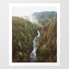 Vance Creek Art Print