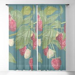 Raspberry Sheer Curtain