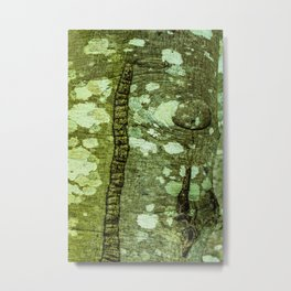 Alder tree bark with lichen and moss natural pattern Metal Print