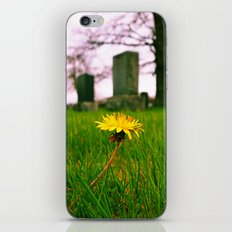 Sign of spring iPhone & iPod Skin