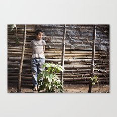The Wattle Mud Wall Canvas Print